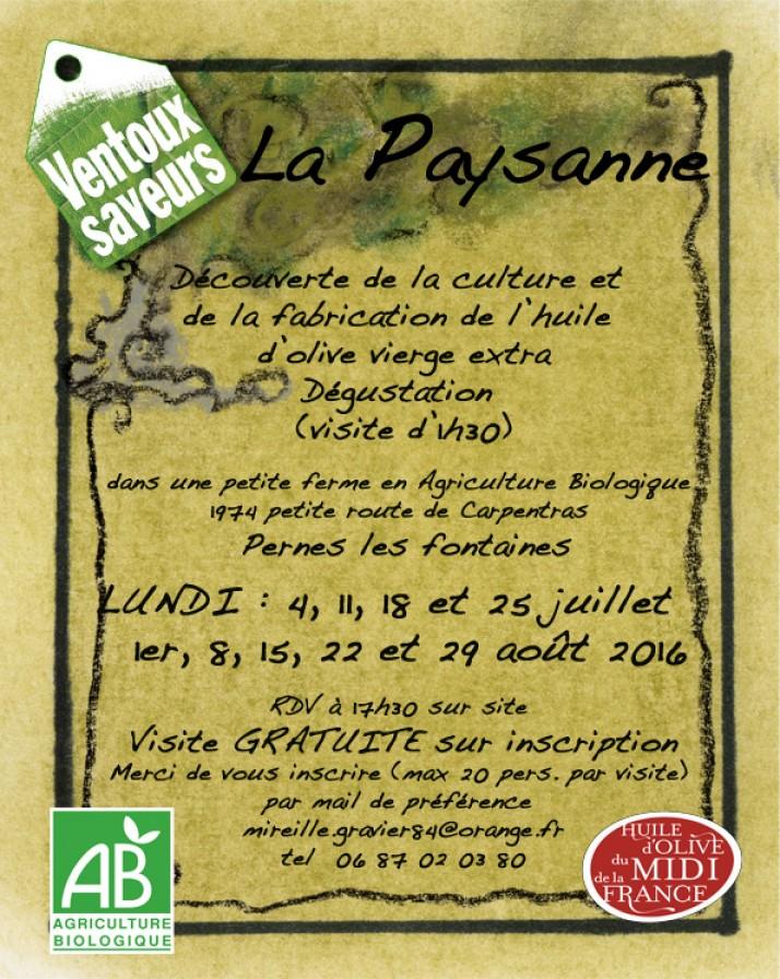 Visite de l'oliveraie et découverte de l'huile d'olive.